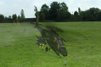 Fly a great range of RC helicopters